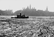 Ottawa Logging